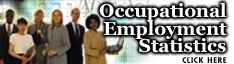 Occupational Employment Statistics Wage Survey